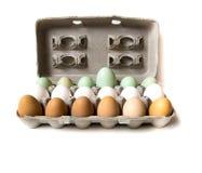 Farm fresh eggs. Carton of fresh farm eggs. Brown, white, and green Royalty Free Stock Photography