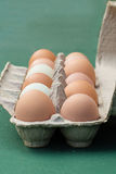 Farm fresh eggs in carton Stock Photo
