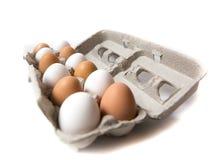 Farm fresh eggs. Carton of white and brown eggs Stock Image
