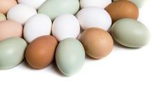 Farm fresh eggs. Colorful Easter eggs shaped like a flower Royalty Free Stock Photo