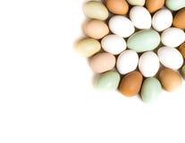 Farm fresh eggs. Colorful Easter eggs shaped like a flower Stock Image