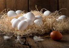 Farm Fresh Eggs. Delicious fresh eggs on straw in a rustic farm setting royalty free stock photo