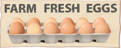 Farm fresh eggs Stock Photos