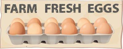 Farm fresh eggs Stock Photos