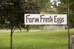 Farm Fresh Eggs Royalty Free Stock Images