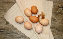 Farm Fresh Eggs. Seven farm fresh brown chicken eggs lying on a beige linen napkin on a old wooden plank, with two small, fluffy chicken feathers as an accent stock image