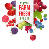 Farm fresh emblem with berries Royalty Free Stock Photography