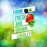 Farm Fresh And Grown Locally Royalty Free Stock Photos