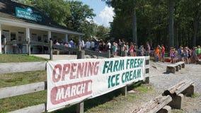 Farm Fresh Ice Cream at Buttonwood Farm royalty free stock photography
