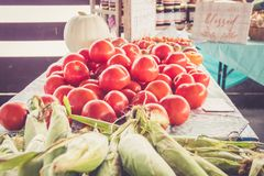 Farm fresh Jersey sweet corn and tomatoes on display at farmers market harvest festival. Farm fresh vegetables on display at farmers market harvest festival Royalty Free Stock Image