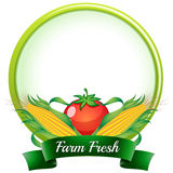 A farm fresh label with corns and tomato Royalty Free Stock Image
