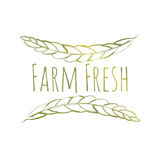 Farm Fresh Label. Green Vector Handdrawn Farm Fresh Eco Label Isolated on White Royalty Free Stock Images