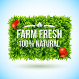 Farm fresh label made of leaves. Vector illustration. Stock Image