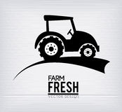 Farm fresh label Royalty Free Stock Photo