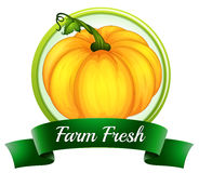 A farm fresh label with a pumpkin Stock Photography