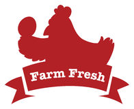 A farm fresh label with a red chicken Royalty Free Stock Images