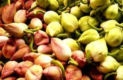 Farm Fresh lotus for Sale Royalty Free Stock Photos