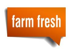 Farm fresh orange 3d speech bubble. Farm fresh orange 3d square isolated speech bubble Royalty Free Stock Image