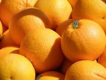 Farm Fresh Oranges. Fresh grown organic oranges at a farm stand Stock Image