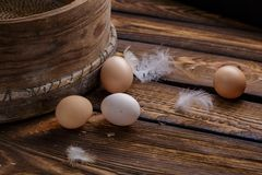 Farm fresh organic chicken eggs and feathers on rustic wooden background. Easter. Royalty Free Stock Photos