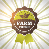 Farm fresh organic product eco label Royalty Free Stock Image