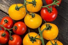 Farm fresh organic tomatoes Stock Image