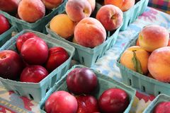Farm fresh plums and peaches Royalty Free Stock Photography