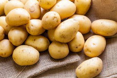 Farm fresh  potatoes on a hessian sack Royalty Free Stock Photos