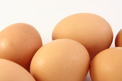 Farm Fresh poultry eggs. Close view of six fresh poultry eggs Royalty Free Stock Photography