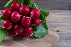 Farm fresh radish. On rustic wooden board Stock Photo