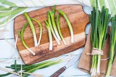 Farm fresh spring onion on cutting board. Farm fresh spring onion on rusticcutting board Stock Photography