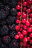 Farm fresh summer berry fruits background Royalty Free Stock Photography