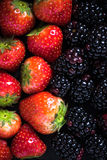 Farm fresh summer berry fruits background Royalty Free Stock Photos