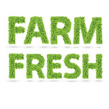 Farm fresh text of green leaves Royalty Free Stock Photo