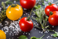 Farm fresh tomatoes with fresh basil herb Stock Image