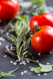 Farm fresh tomatoes with fresh basil herb Stock Images