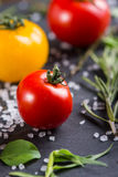 Farm fresh tomatoes with fresh basil herb Stock Photo