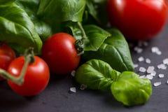 Farm fresh tomatoes with fresh basil herb Stock Photos