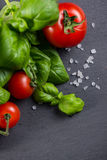 Farm fresh tomatoes with fresh basil herb Royalty Free Stock Photos