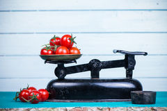 Farm fresh tomatoes on vintage scale Stock Photography