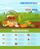 Farm fresh vegetable banner with rural landscape Stock Image