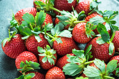 Farm fresh whole strawberries Royalty Free Stock Photography