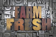 Farm Fresh. Written in vintage letterpress type stock photo
