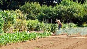 Farm garden in Boso no Mura, Narita Royalty Free Stock Photography
