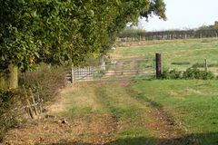 Farm gate Royalty Free Stock Image