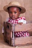 Farm girl Stock Images
