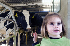 Farm girl in cow milking facility Royalty Free Stock Images