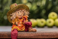 Farm Girl, Harvest, Agriculture Royalty Free Stock Photos