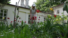 Farm girl water hose. Beautiful farm girl woman with cap watering garden colorful flowers with hose sprinkler stock video