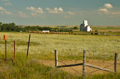 Farm with Grain Elevator. Landscape of farm with barbed wire fence in foreground and bales of hay and grain elevator near horizon. Canada Stock Photos